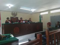 Setubuhi Bunga di Pantai Bintan, Rio divonis 6 Tahun Penjara