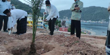 Gubernur Ansar Tanam Kurma di Masjid Agung Tarempa