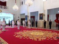 Ansar-Marlin Dilantik Jokowi Bersama 3 Gubernur dan Wakil Gubernur