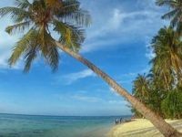 Kejari Karimun Kumpulkan Data Terkait Tanah Pantai Bersertifikat Yang Tidak Selayaknya