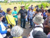 Gubernur Tinjau Area Tanggul Kawasan Pertanian di Karimun